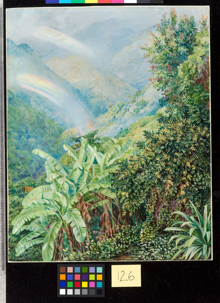 126. View from the Artist's House in Jamaica, with Double Rainbo. © RBG KEW
