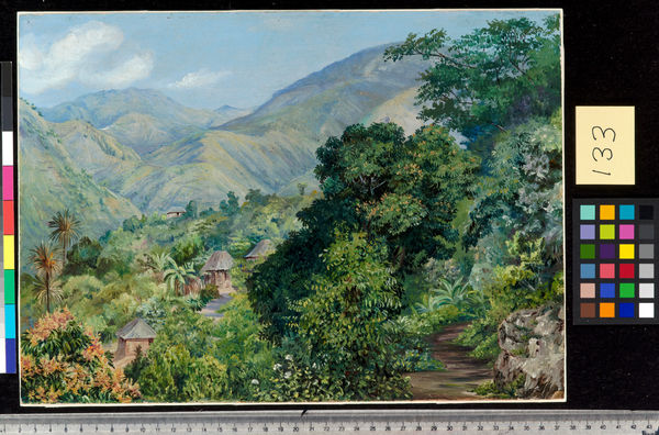 133. Distant View of Newcastle, Jamaica.. © RBG KEW