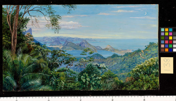 138, View of the Bay of Rio and the Sugar-loaf Mountain, Brazil. © RBG KEW