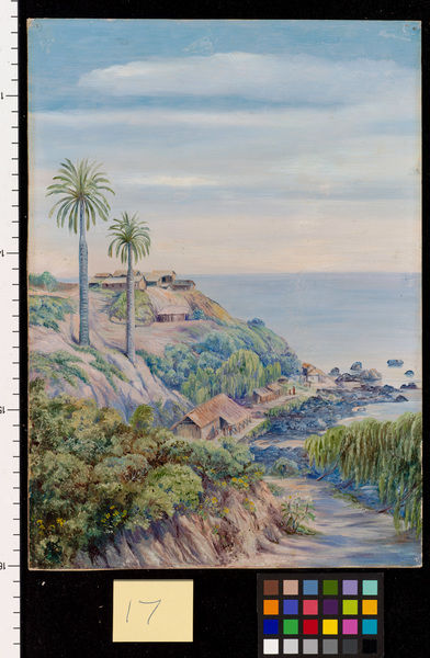 17. View of Concon, Chili, with its two Palms.. © RBG KEW
