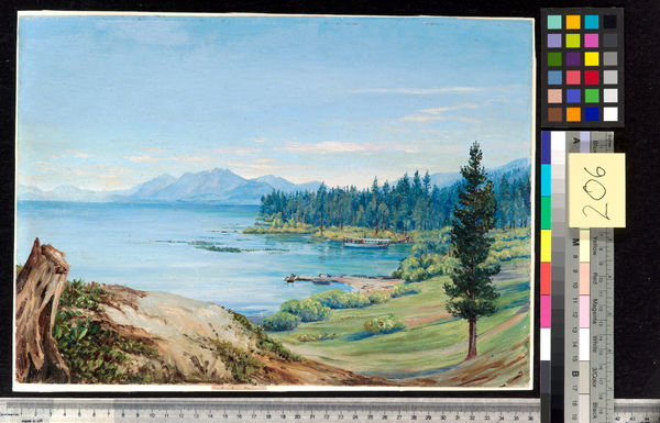 206. Another View of Lake Tahoe and Nevada Mountains, California. © RBG KEW