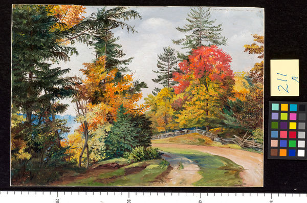 211. Autumn Tints, near Niagara, United States.. © RBG KEW