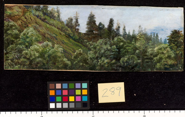 289. Pine-clad slopes of Nagkunda, North India, and view of the. © RBG KEW
