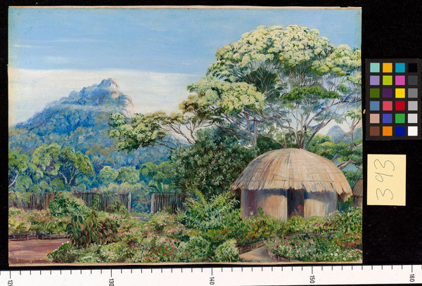 "393. Part of the ""Residence,"" St. John's, Kaffraria. 393. Part of the ""Residence,"" St. John's, Kaffraria.. © RBG KEW"