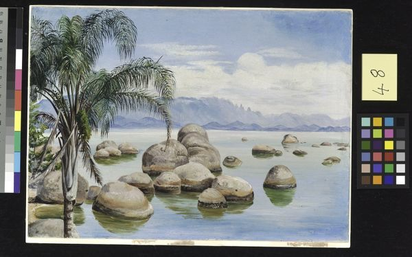 48. Palm Trees and Boulders in the Bay of Rio, Brazil.. © RBG KEW