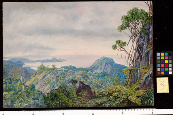 480. View of the South Coast of Mahe and Schools of Venn's Tow. © RBG KEW