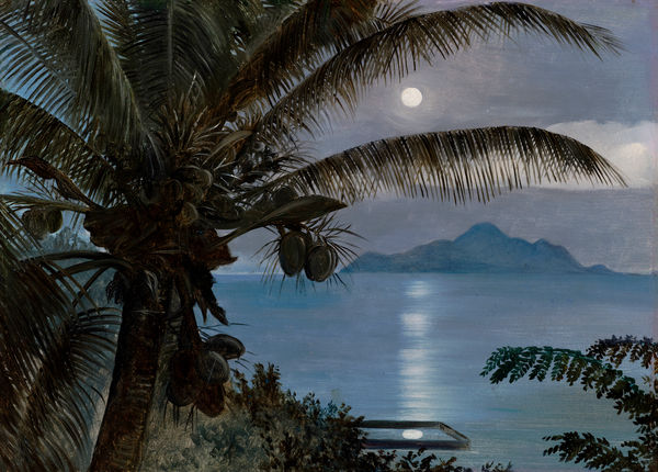 481. Moon reflected in a turtle pool, Seychelles.. © RBG KEW