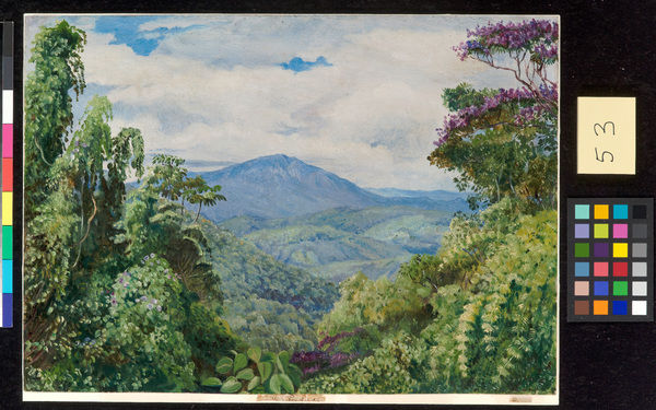 53. View of the Piedade Mountains, from Congo, Brazil.. © RBG KEW