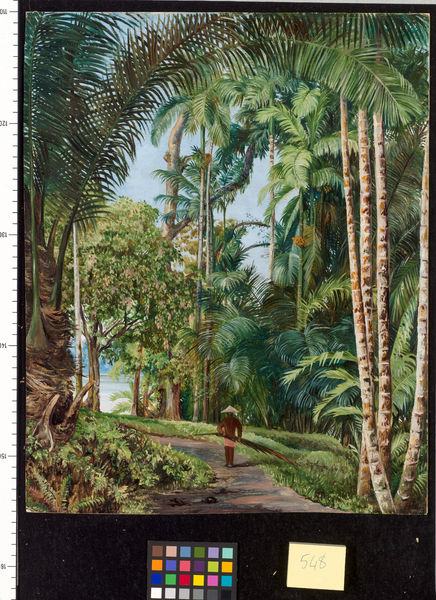 548. Walk under Palms, with a glimpse of the River at Sarawak.. © RBG KEW