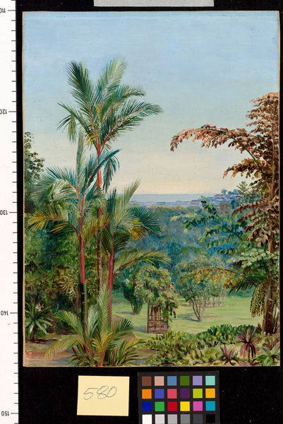 580. View of Singapore, from Dr. Little's garden.. © RBG KEW