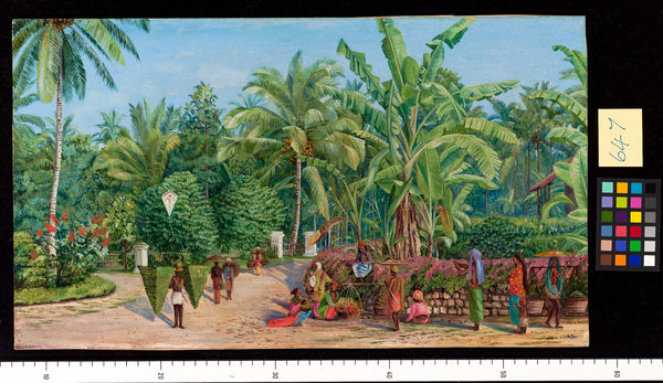 647. View from the Artist's Window at Buitenzorg, Java.. © RBG KEW