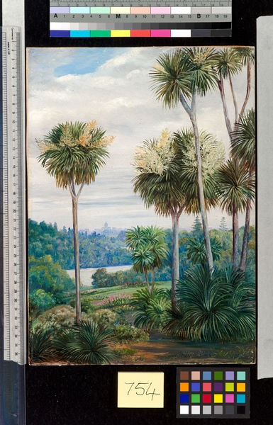 754. View of Melbourne, from the Botanic Gardens.. © RBG KEW