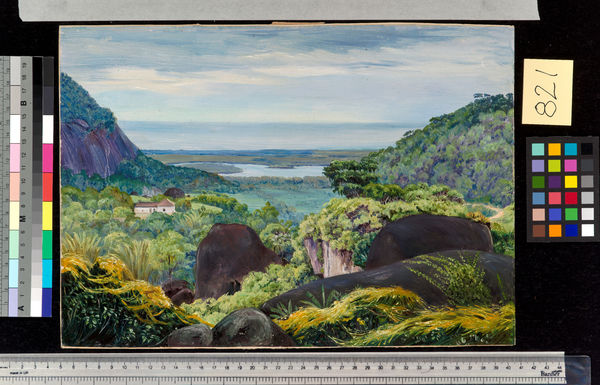 821. View near Tijuca, Brazil, Granite Boulders in the foregroun. © RBG KEW