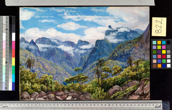 822. Noonday View in the Organ Mountains, Brazil, from Barara.. © RBG KEW