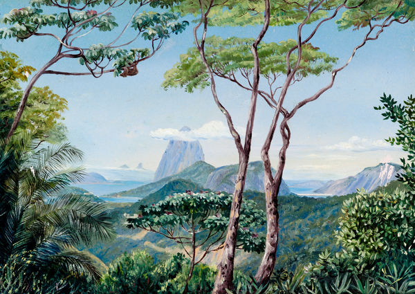 823. View of the Sugarloaf Mountain from the Aqueduct Road, Rio Janeiro.. © RBG KEW