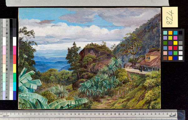 824. View from the Sierra of Theresopolis, Brazil.. © RBG KEW