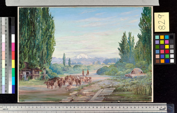829. One of the Volcanoes of the Cordilleras, from Poplar Avenue. © RBG KEW