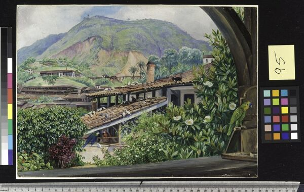 95. View of' the Old Gold Works from the verandah at Morro Velho. © RBG KEW