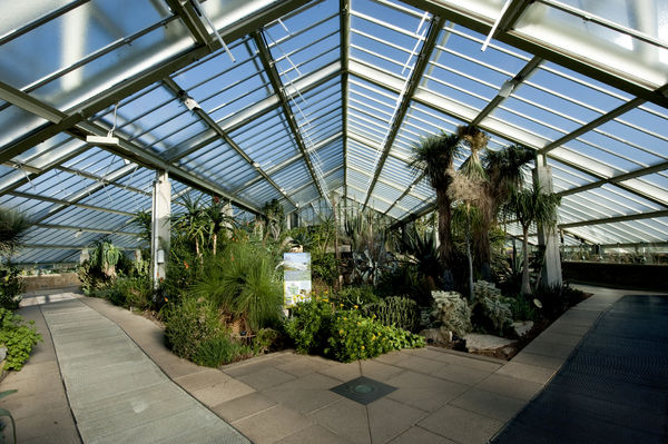 Arid zone, Princess of Wales Conservatory. © RBG KEW