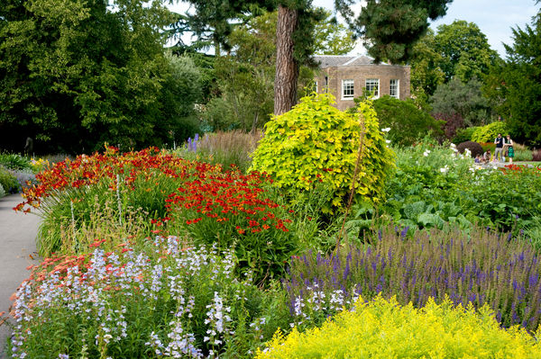 Cambridge cottage garden. © RBG KEW
