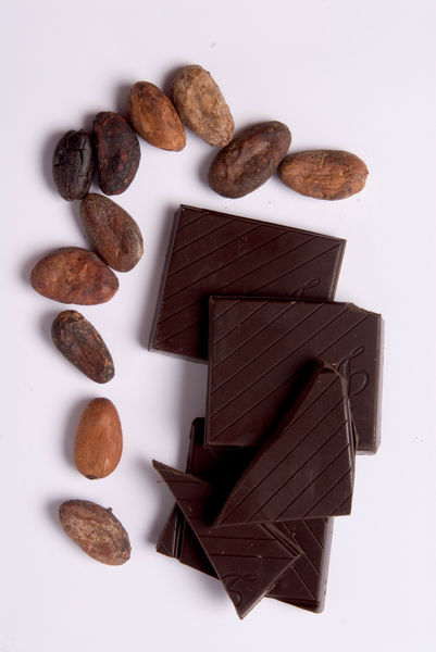 Cocao beans and Chocolate. © RBG KEW