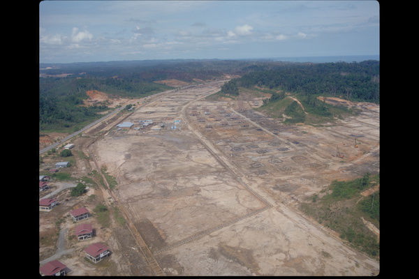 Deforestation in Brunei. © RBG Kew