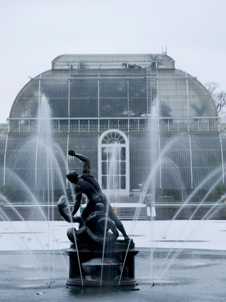 Hercules in the Palm House Pond in Winter. © RBG KEW