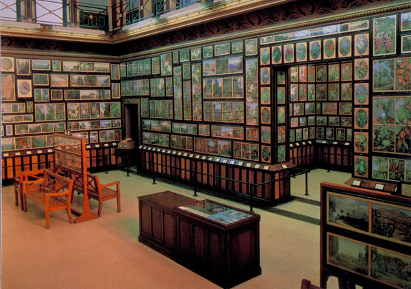 Inside the Marianne North Gallery. Copyright © RBG Kew