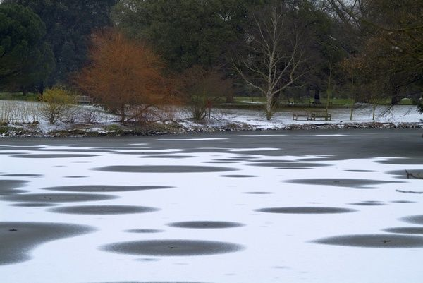 the Lake freezes. © RBG KEW