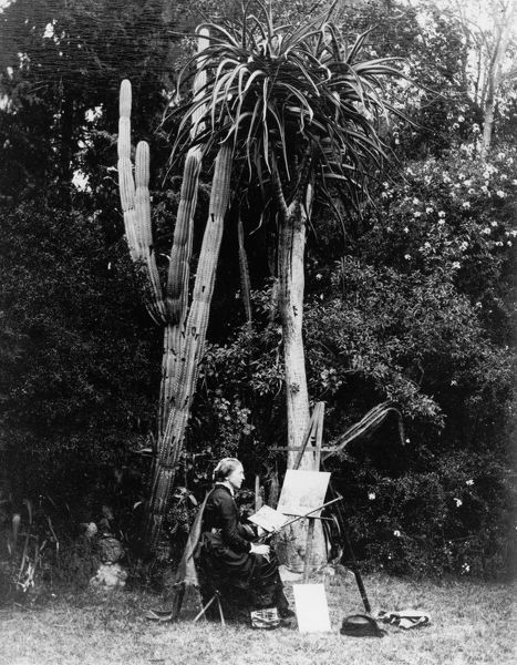 Marianne North painting in South Africa, circa 1883. © RBG KEW