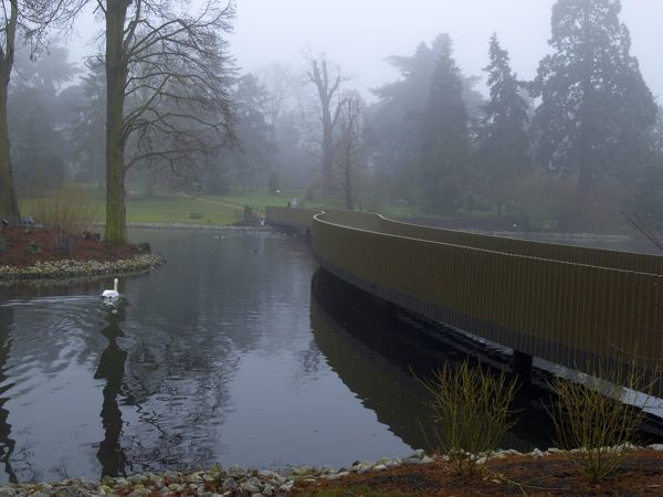 a misty autumn day. © RBG KEW