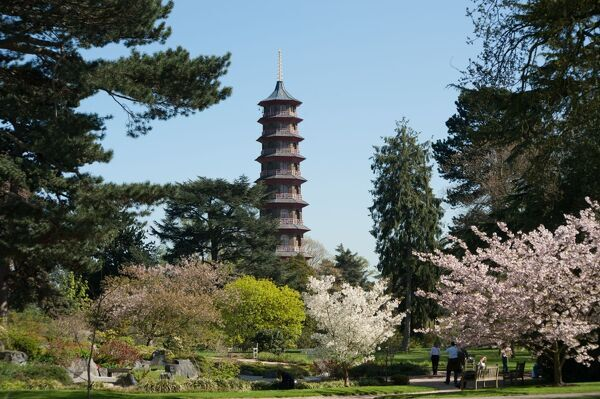 The Pagoda, RBG Kew. © RBG KEW