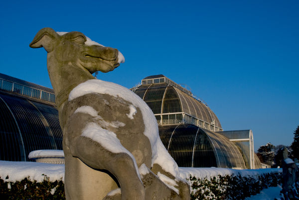 Palm House in the snow. © RBG KEW