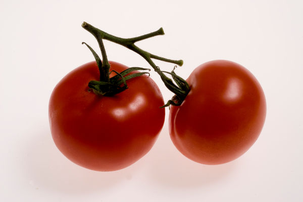 Red Tomatoes,. © RBG KEW