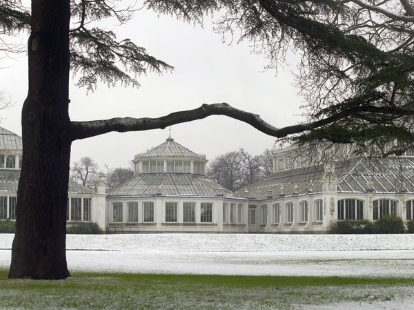 Temperate House. © RBG KEW