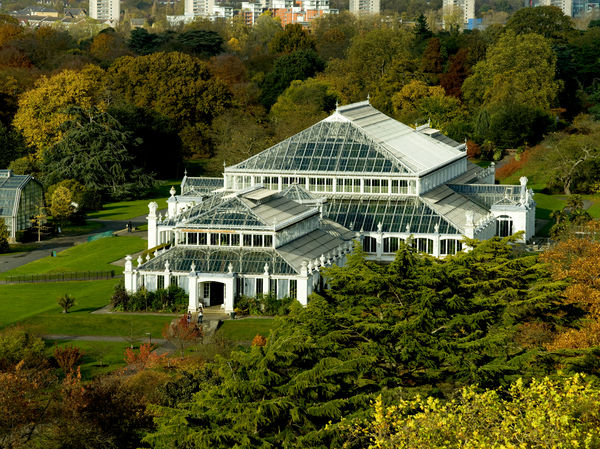 Temperate house from Pagoda. © RBG KEW
