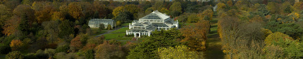 Temperate House, RBG Kew. © RBG KEW