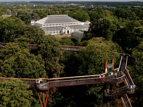 Tree top walkway. © RBG KEW