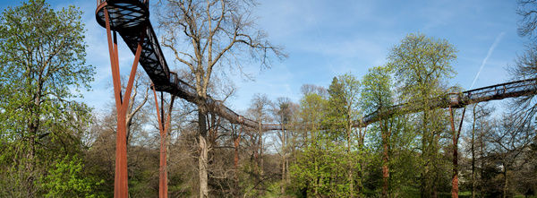 Tree top walkway panorama. © RBG KEW