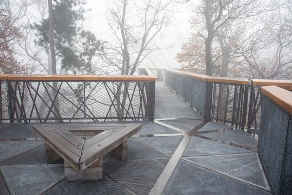 treetop walkway in the mist. © RBG KEW