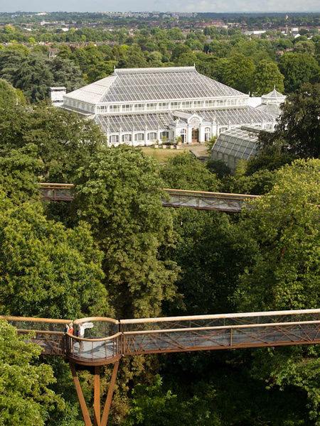 Treetop walkway and Temperate House. © RBG KEW