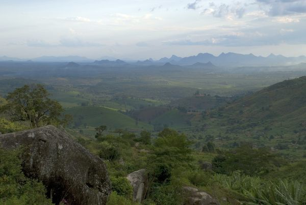View over Mozambique. © RBG KEW