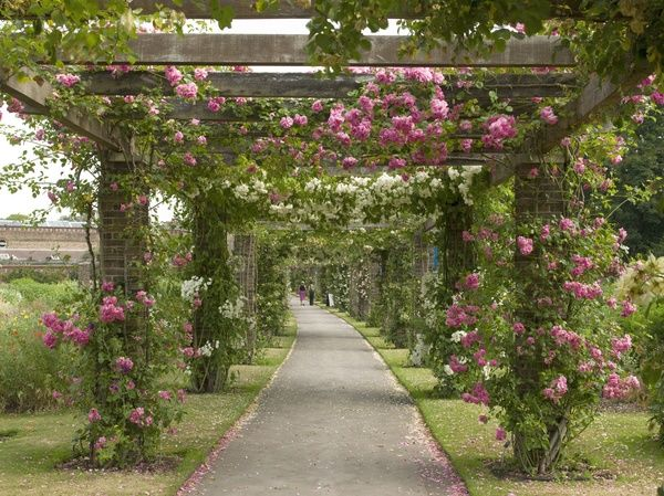 view through the pergola. © RBG KEW