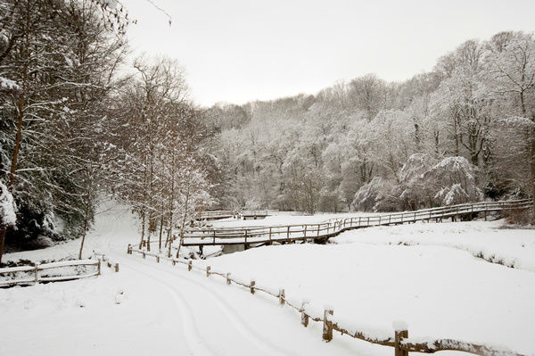 Wakehurst Place in the snow. © RBG KEW