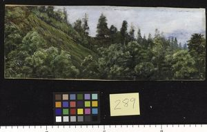 289. Pine-clad slopes of Nagkunda, North India, and view of the