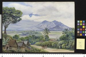 668. View from Malang, Java.