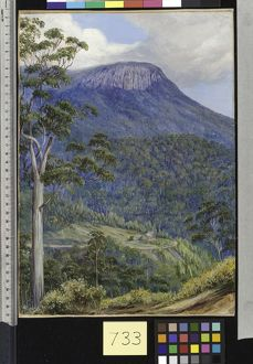 733. View of the 'Organ Pipes,' Mount Wellington, Tasmania