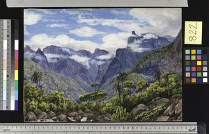 822. Noonday View in the Organ Mountains, Brazil, from Barara.