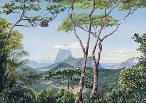 823. View of the Sugarloaf Mountain from the Aqueduct Road, Rio Janeiro.