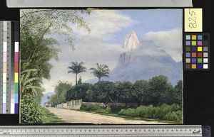 825. View of the Corcovado Mountain, near Rio de Janerio, Brazil